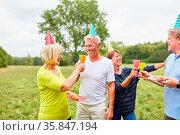 Fröhliche Senioren mit bunten Hütchen feiern ein Sommerfest im Garten. Стоковое фото, фотограф Zoonar.com/Robert Kneschke / age Fotostock / Фотобанк Лори