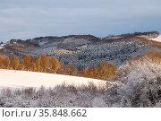 Winter. Стоковое фото, фотограф Zoonar.com/Marlene Cleven / age Fotostock / Фотобанк Лори