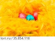 Drei bunte Ostereier liegen in einem Nest aus Federn zu Ostern. Стоковое фото, фотограф Zoonar.com/Robert Kneschke / age Fotostock / Фотобанк Лори