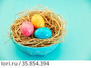 Drei bunte Eier zu Ostern im Nest und Korb als Dekoration. Стоковое фото, фотограф Zoonar.com/Robert Kneschke / age Fotostock / Фотобанк Лори