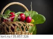 fresh natural organic ripe radish in basket. Стоковое фото, фотограф Peredniankina / Фотобанк Лори