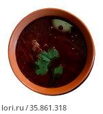 Belarusian beet borscht with cabbage garnished with greens. Стоковое фото, фотограф Яков Филимонов / Фотобанк Лори