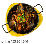 Delicious boiled mussels with tomato sauce and parsley. Стоковое фото, фотограф Яков Филимонов / Фотобанк Лори