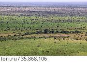 Die weite Landschaft im Kruger Nationalpark Südafrika, vom Nkumbe... Стоковое фото, фотограф Zoonar.com/W. Woyke / age Fotostock / Фотобанк Лори