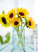 Sunflower. Стоковое фото, агентство Ingram Publishing / Фотобанк Лори