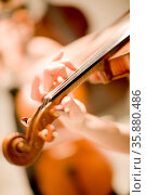 Violin. Стоковое фото, агентство Ingram Publishing / Фотобанк Лори