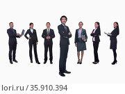 Medium group of business people in a row, portrait, full length, studio shot. Стоковое фото, агентство Ingram Publishing / Фотобанк Лори