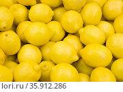 Lemons. Стоковое фото, фотограф Shannon Fagan / Ingram Publishing / Фотобанк Лори