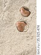 Feet under sand. Стоковое фото, фотограф Shannon Fagan / Ingram Publishing / Фотобанк Лори