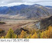 Перевал Чике-Таман, Алтай, Россия. Стоковое фото, фотограф Инна Грязнова / Фотобанк Лори