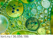 Colourful oil ink bubbles and drops.Abstract paint design template... Стоковое фото, фотограф Zoonar.com/BASHTA / easy Fotostock / Фотобанк Лори