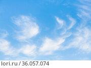 Белые перистые облака. Стоковое фото, фотограф E. O. / Фотобанк Лори