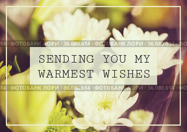 Composition of well wishes text with flowers