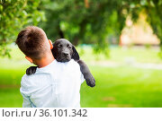 The little boy is holding a black labrador retriever in his arms.... Стоковое фото, фотограф Zoonar.com/OKSANA SHUFRYCH / easy Fotostock / Фотобанк Лори
