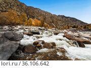 Ilgumen rapids on the Katun river. Altai republic. Russia. Стоковое фото, фотограф Наталья Волкова / Фотобанк Лори
