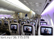 """""""Frankfurt am Main, Germany, only a few seats are occupied in an aircraft cabin during the corona pandemic"""" Редакционное фото, агентство Caro Photoagency / Фотобанк Лори"""