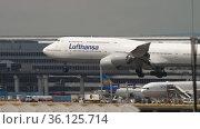 Jumbo jet of Lufthansa arrives at Frankfurt airport (2017 год). Редакционное видео, видеограф Игорь Жоров / Фотобанк Лори