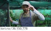 African american male gardener taking off cap and looking at camera at garden center. Стоковое видео, агентство Wavebreak Media / Фотобанк Лори