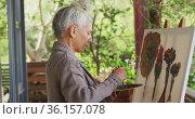 Portrait of senior mixed race woman painting and smiling on balcony. Стоковое видео, агентство Wavebreak Media / Фотобанк Лори