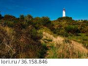 Postcard lighthouse on isle of Hiddensee in summer. Стоковое фото, фотограф Zoonar.com/Stefan Dinse / easy Fotostock / Фотобанк Лори