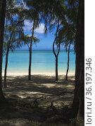 Mon Choisy beachfront, Mauritius, Indian Ocean. Стоковое фото, фотограф Mehul Patel / age Fotostock / Фотобанк Лори