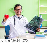Doctor radiologist looking at x-ray scan in hospital. Стоковое фото, фотограф Elnur / Фотобанк Лори