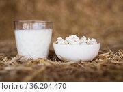 milk and cottage cheese on hay. Стоковое фото, фотограф Татьяна Яцевич / Фотобанк Лори