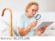 Elderly woman with glasses and loupe using a modern digital tablet. Стоковое фото, фотограф Zoonar.com/Tomas Anderson / easy Fotostock / Фотобанк Лори