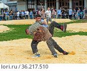 Nachwuchs-Schwinger kämpfen im Sägemehlring,19. Kantonales Schwingfest... Стоковое фото, фотограф Zoonar.com/GFC Collection / age Fotostock / Фотобанк Лори