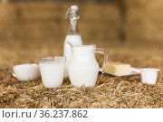 dairy products on table against the background of hay. Стоковое фото, фотограф Татьяна Яцевич / Фотобанк Лори