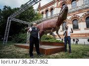 Museo Civico di Storia Naturale (Civic Museum of Natural History) ... Редакционное фото, фотограф Nicola Marfisi / AGF/Nicola Marfisi / AGF / age Fotostock / Фотобанк Лори