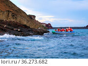 Group of tourists photographing from a dinghy near Bartolome island... Стоковое фото, фотограф Zoonar.com/Don Mammoser / age Fotostock / Фотобанк Лори
