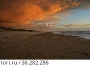 Wolken am Strand von Den Helder in Abendstimmung bei Sturm. Стоковое фото, фотограф Zoonar.com/claudia moeckel / easy Fotostock / Фотобанк Лори