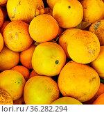 Organic orange fruits at the market close-up. Стоковое фото, фотограф Zoonar.com/Roman Sigaev / easy Fotostock / Фотобанк Лори