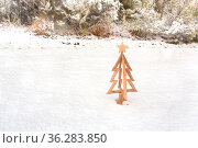 Little timber Christmas tree in fresh white snow. Стоковое фото, фотограф Zoonar.com/Leah-Anne Thompson / easy Fotostock / Фотобанк Лори