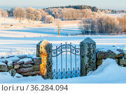 Old iron gate in a snowy winter landscape in the countryside. Стоковое фото, фотограф Zoonar.com/Lars Johansson / easy Fotostock / Фотобанк Лори