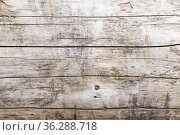 Vintage wooden wall. Frontal background photo. Стоковое фото, фотограф EugeneSergeev / Фотобанк Лори