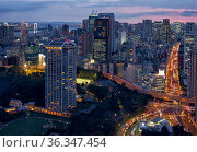 The view from the Tokyo Tower to the Tokyo bay direction at night time. Tokyo. Japan (2019 год). Редакционное фото, фотограф Serg Zastavkin / Фотобанк Лори