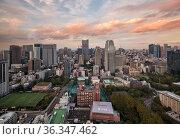ARK Hills as seen from the Tokyo Tower at sunset. Tokyo. Japan (2019 год). Редакционное фото, фотограф Serg Zastavkin / Фотобанк Лори