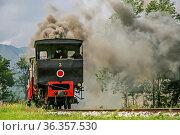 Eine Fahrt mit der alten Dampfeisenbahn von Jenbach an den Achensee... Стоковое фото, фотограф Zoonar.com/Eder Hans / easy Fotostock / Фотобанк Лори