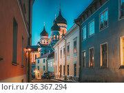 Tallinn, Estonia. Evening Or Night View Of Alexander Nevsky Cathedral... Стоковое фото, фотограф Ryhor Bruyeu / easy Fotostock / Фотобанк Лори