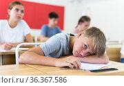 Boy sleeping on desk. Стоковое фото, фотограф Яков Филимонов / Фотобанк Лори