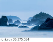 Coastal sea stacks and boulders in post-sunset light, Crescent City, California, USA. Стоковое фото, фотограф Jack Dykinga / Nature Picture Library / Фотобанк Лори