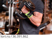 Muscular man working out in gym doing exercises with dumbbells at... Стоковое фото, фотограф Zoonar.com/DAVID HERRAEZ CALZADA / easy Fotostock / Фотобанк Лори