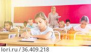 Diligent tween girl studying with classmates in elementary school. Стоковое фото, фотограф Яков Филимонов / Фотобанк Лори