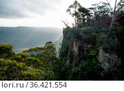 View to Spooners Lookout at the Three Sisters in the Blue Mountains... Стоковое фото, фотограф Zoonar.com/Loes Kieboom / easy Fotostock / Фотобанк Лори