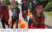 Halloween kids going to collect candy. Trick-or-treating. Guising. Jack-o-lantern. Children in carnival costumes outdoors. Witch and skeletons. Friends with orange balloons. celebrate halloween. Стоковое видео, видеограф Ирина Ткачук / Фотобанк Лори