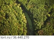 Aerial View Green Forest Woods And River Marsh Bog In Summer Landscape... Стоковое фото, фотограф Ryhor Bruyeu / easy Fotostock / Фотобанк Лори