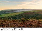 Evening dust over the landscape in the Exmoor National Park on Porlock... Стоковое фото, фотограф Zoonar.com/Bernd Brueggemann / easy Fotostock / Фотобанк Лори