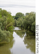 Idyllisches Altwasser in Regensburg vom Nordende der Steinernen Brücke... Стоковое фото, фотограф Zoonar.com/Eder Christa / easy Fotostock / Фотобанк Лори